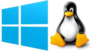 servery_linux_windows